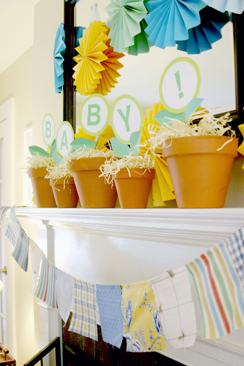 A Vegetable Garden Baby Shower DesignLively