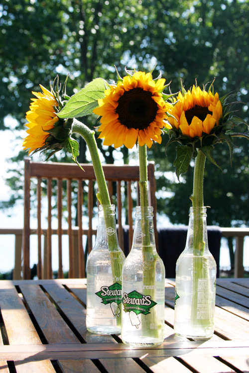 Easy Soda Pop Bottle Flower Vases - DesignLively